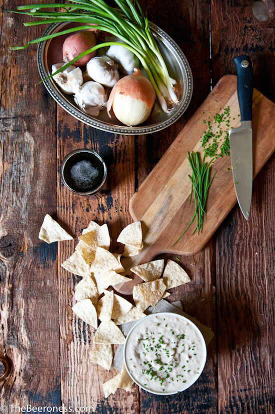 Porter-Caramelized-Onion-Greek-Yogurt-Dip