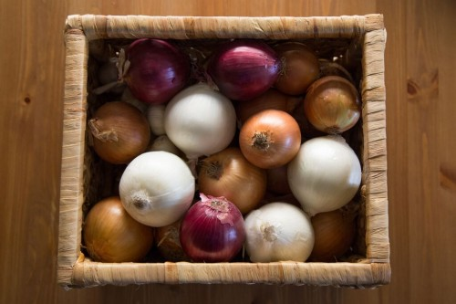 how to store onions