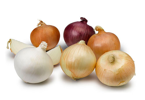 Colors Seasons of Onions