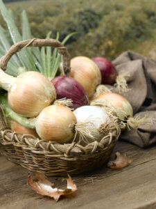 Basket of onions — National Onion Association