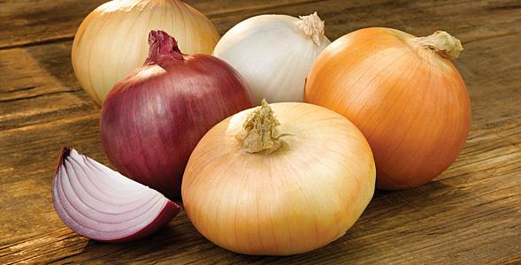 Easy Onion Rolls National Onion Association