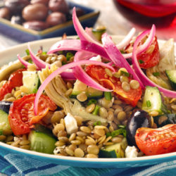 Lentil Salad with Marinated Onions, Roasted Tomatoes and Olives Notional Onion Association
