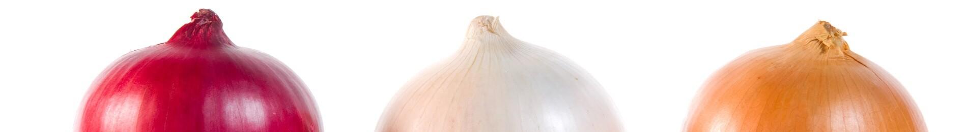Onion Tips, Myths & FAQs