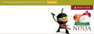 Website advertising example