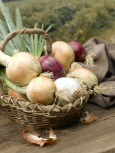 harvested onions in basket